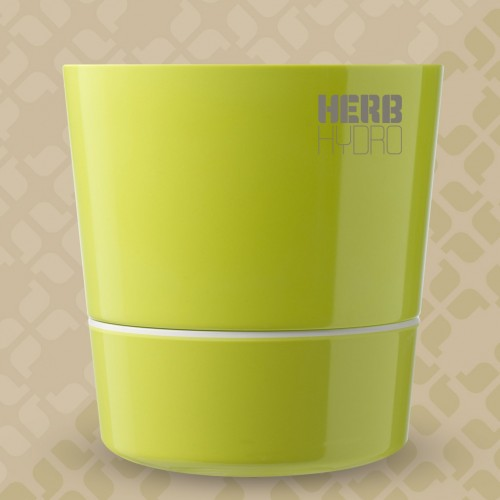 Herb Hydro Pot Lime