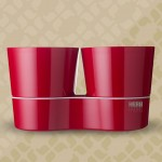Herb Hydro Twin Red