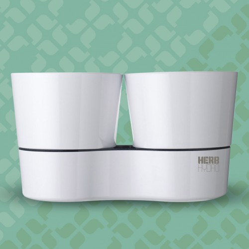 Herb Hydro Twin White
