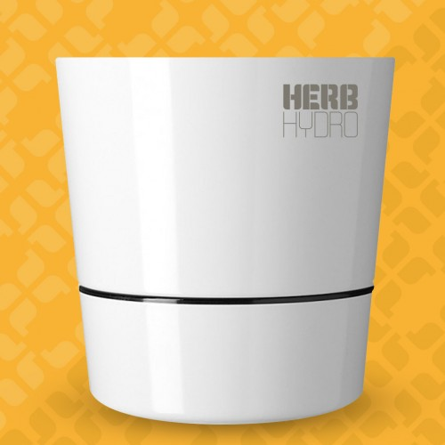 Herb Hydro Pot White